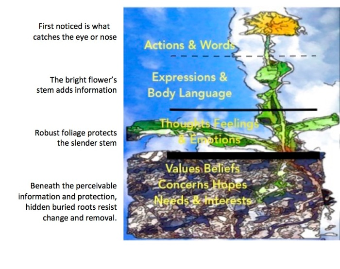 Dandelion of values & interests